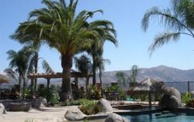 Tropical Backyard Paradise